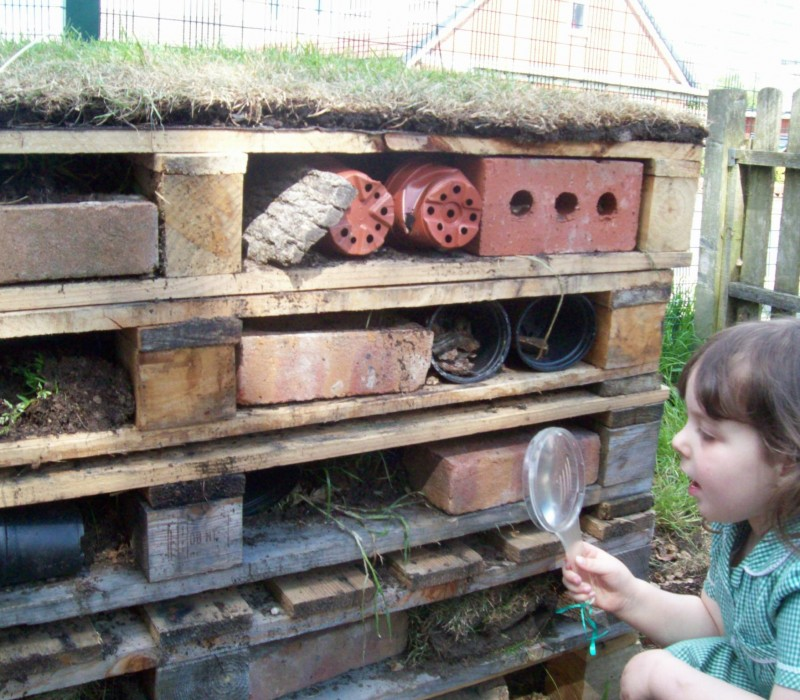 Our bug hotel is a big hit with the children